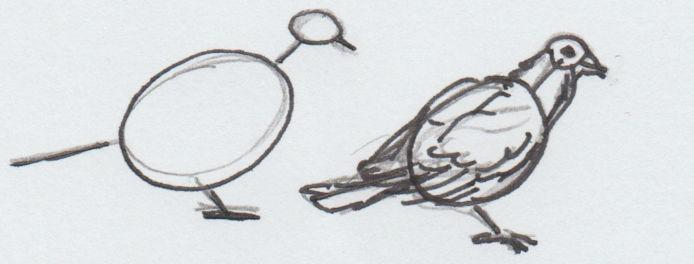 Teken een vogel